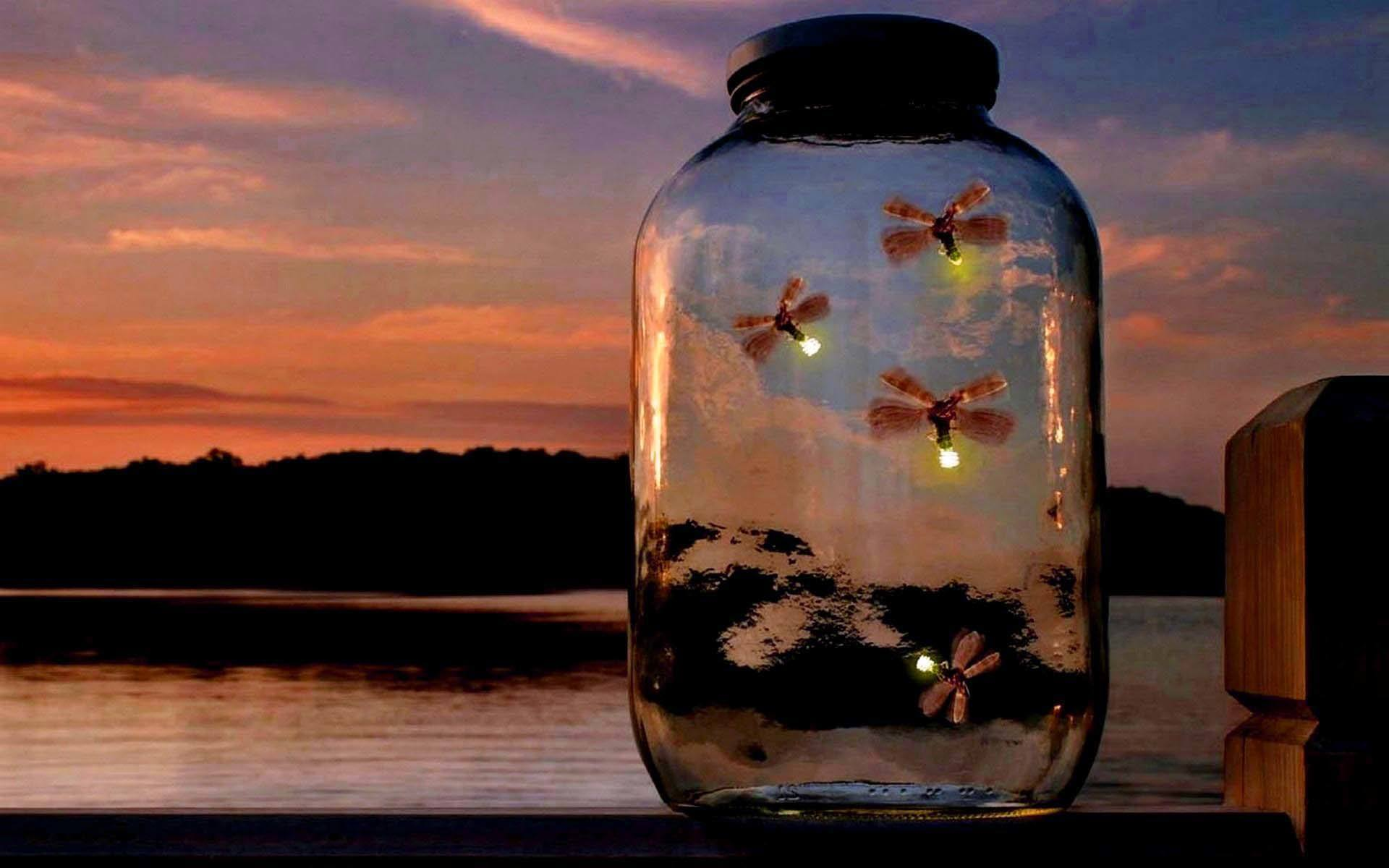 Pin by Kayjah Dotson on Party | Glow jars, Fireflies in a ... |Fireflies In A Jar Cover Photo